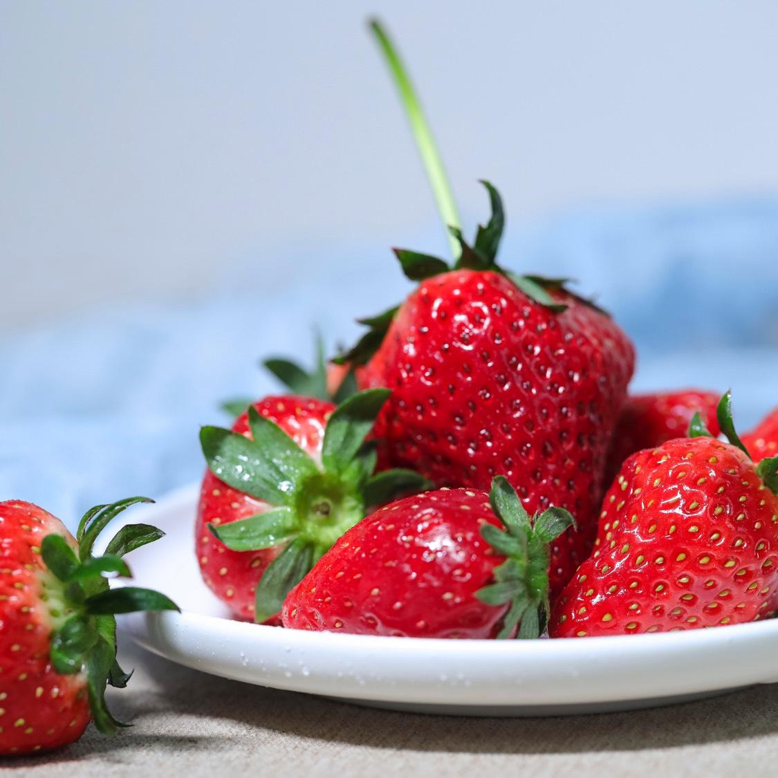 草莓季  大家都去草莓园了吗?
